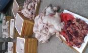 Thanh Hóa: Bắt giữ gần 1 tấn thịt và nội tạng chó mèo