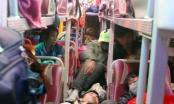 Thanh Hóa: Mật phục bắt quả tang xe khách nhồi 59/42 người