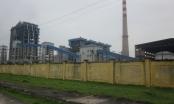 Nhà máy Đạm Ninh Bình đầu tư gần 700 triệu USD, 3 năm lỗ liên tiếp