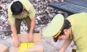 Thanh Hóa: Tiêu hủy gần 5.000 quả trứng nhập lậu