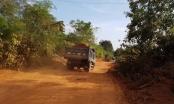 Thanh Hóa: Doanh nghiệp chở đất phá nát đường đê mới tu sửa hàng chục tỉ đồng