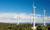 Giá điện gió thấp nhất là 1.928 đồng/kWh