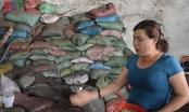 Vụ phế phẩm cà phê trộn pin ở Đắk Nông: Truy tố 5 bị can