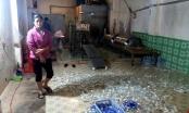 Đình chỉ cơ sở sản xuất nước đóng chai mất vệ sinh