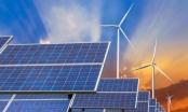 Xây dựng Ninh Thuận trở thành tỉnh sản xuất năng lượng tái tạo lớn của cả nước
