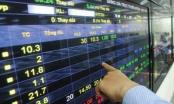 Mắc nhiều lỗi vi phạm Công ty cổ phần Khang Minh Group bị xử phạt hành chính 255 triệu đồng