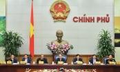 Thủ tướng và các Phó Thủ tướng Chính phủ được phân công công tác