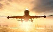 Dừng phê duyệt chủ trương đầu tư Dự án vận tải hàng không Vinpearl Air