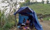 Xúc động hình ảnh nữ sinh dựng lều trên núi để học online ngày dịch
