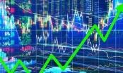 Công ty cổ phần Thuận Đức bị xử phạt 100 triệu đồng