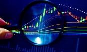 Tổng công ty cổ phần Đầu tư quốc tế Viettel bị xử phạt