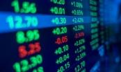 Công ty cổ phần Thương mại Hà Tây bị xử phạt 85 triệu đồng