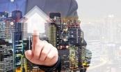 Xử lý nghiêm các đối tượng lợi dụng thông tin để đẩy giá bất động sản