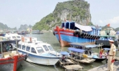 Quảng Ninh: Xử phạt gần 3.000 phương tiện thủy vi phạm