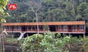 """Xây dựng công trình """"khủng"""" trái phép, Công ty Y học bản địa Việt Nam còn lấn chiếm đất rừng"""