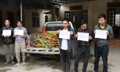 Hà Tĩnh: Nhân viên câu kết trộm tài sản của công ty Formosa