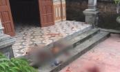 Phú Thọ: Con trai sát hại bố vì bị mắng