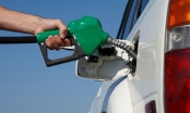 Hôm nay, giá xăng dầu sẽ được điều chỉnh giảm