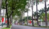 Chùm ảnh: Những ngày này, có một Sài Gòn tĩnh lặng lạ thường khi người dân đã rủ nhau đi trốn
