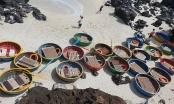 Nhịp sống mới trên đảo tiền tiêu Lý Sơn