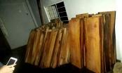 Phát hiện gỗ lậu của lãnh đạo Công ty thủy điện Sông Tranh 3