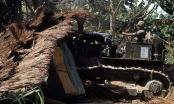 Đội quân 'xuất quỷ nhập thần': Công trình thách thức mọi loại vũ khí của quân Mỹ