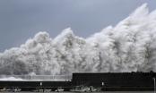 Ít nhất 1 người thiệt mạng và hơn 50 người bị thương khi bão Krosa đổ bộ Nhật Bản