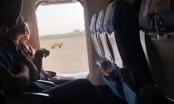 """Hoãn chuyến bay vì... hành khách muốn """"thở không khí trong lành"""""""