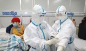 Số người chết vì virus corona tại Trung Quốc lên 2.442