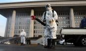 Hàn Quốc có thêm 115 ca nhiễm Covid-19