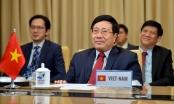 Việt Nam muốn chung tay với toàn cầu trong phòng chống COVID-19