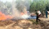 Đề xuất thành lập Khu bảo tồn rừng huyện Xuân Lộc – Đồng Nai