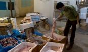 Bí ẩn về 6 tấn thực phẩm bẩn trong kho lạnh giữa lòng thủ đô Hà Nội
