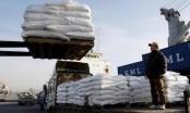 Nga gửi 25.000 tấn lúa mỳ viện trợ Triều Tiên đối phó nạn hạn hán