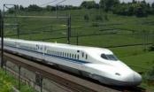 Dự án đường sắt tốc độ cao Bắc-Nam: Cần tính đến tính khả thi cho các phương án tài chính