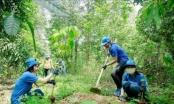 Mục tiêu 1 tỷ cây xanh