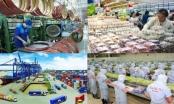 IMF: Tăng trưởng kinh tế Việt Nam có thể đạt 6,5% năm 2021