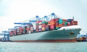 Cảng Quốc tế Tân cảng - Cái Mép lập kỷ lục mới về sản lượng xếp dỡ