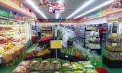 Có bao nhiêu siêu thị, cửa hàng ở Hà Nội đã nhận hàng của Công ty Thanh Nga?