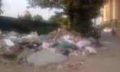 Hà Nội: Vấn nạn đổ trộm rác thải trên nhiều tuyến đường