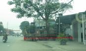 Cận cảnh nhà thờ họ Đặng của Chủ tịch UBND tỉnh Hà Tĩnh nằm sát quốc lộ