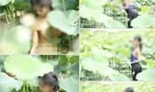 Cộng đồng mạng lên án thiếu nữ chụp ảnh khoả thân ở đầm sen