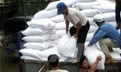 Chính phủ tiếp tục hỗ trợ gạo cho 6 tỉnh trong dịp Tết Bính Thân