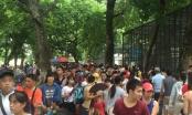 6 vạn lượt người đến tham quan sáng 2/9, Công viên Thủ Lệ... thất thủ