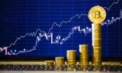 Giá Bitcoin hôm nay 25/11: Bitcoin lấy lại đà tăng, Ethereum đạt đỉnh