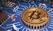 Giá Bitcoin hôm nay 2/12: Trở lại mốc 10.000 USD