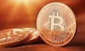 Giá Bitcoin hôm nay 06/12: Bao giờ cột mốc 12.000 USD sẽ được phá vỡ?