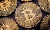 Giá Bitcoin hôm nay 21/12: Phiên bản phân tách của Bitcoin tăng vọt