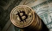 Giá Bitcoin hôm nay 30/12: Tăng tới 1.400% trong năm 2017