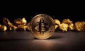 Giá Bitcoin hôm nay 28/12: Qua cơn khủng hoảng, bám chắc ngưỡng 16.000 USD